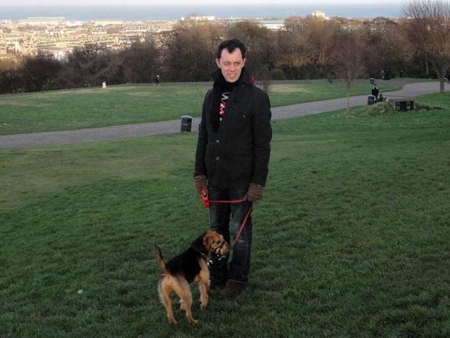 Cranberry Dog Park Norwalk Ct